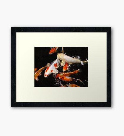 Fins Framed Print
