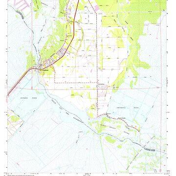 USGS TOPO Map Louisiana LA Des Allemands 331837 1967 24000 by wetdryvac