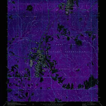 USGS TOPO Map Louisiana LA Fort Polk 332009 1974 24000 Inverted by wetdryvac