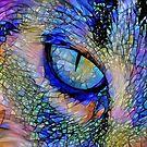 Eye of a cat - photo art by EOSXTi