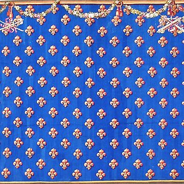 GOLD FLEURS DE LYS IN BLUE WITH CROSSED ARMS Antique French Tapestry by BulganLumini