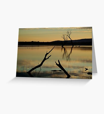 Dead Trees, Lake Fyans, Grampians. Greeting Card