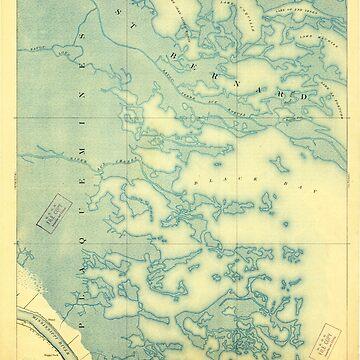 USGS TOPO Map Louisiana LA Dime 334470 1893 62500 by wetdryvac