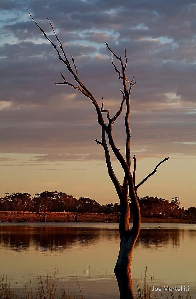 First Light,Lake Fyans Grampians by Joe Mortelliti