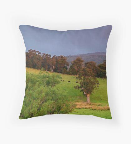 Warm Glow,Otway Farmlands Throw Pillow