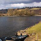 Fishing Anyone? by Lynne Morris