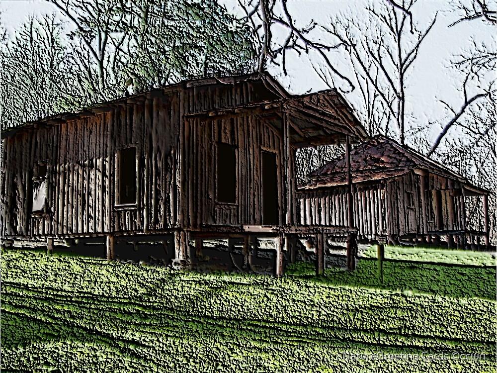 Rush Arkansas,  The Forgotten  by NatureGreeting Cards ©ccwri