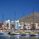 Port Of Pollensa by Jim Wilson