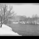 Snowy River by Nokie