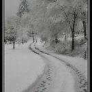 Snowy Roads by Nokie