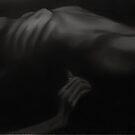 into the dark by Zeb Shaffer