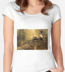 Two Duckies Women's Fitted Scoop T-Shirt