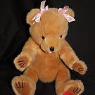 Teddy Bear in Bows by AnnDixon