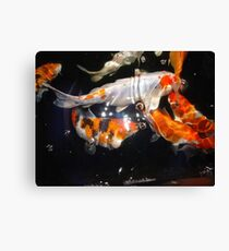 Bubbles and Stars Canvas Print