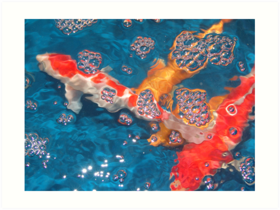 Swim in the Bubbly by May Lattanzio