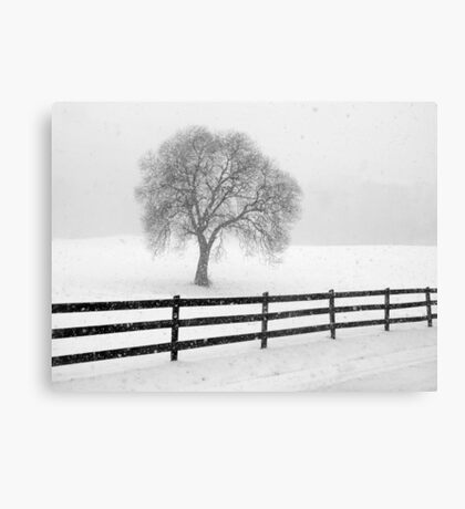 listen: the snow is falling all around Canvas Print