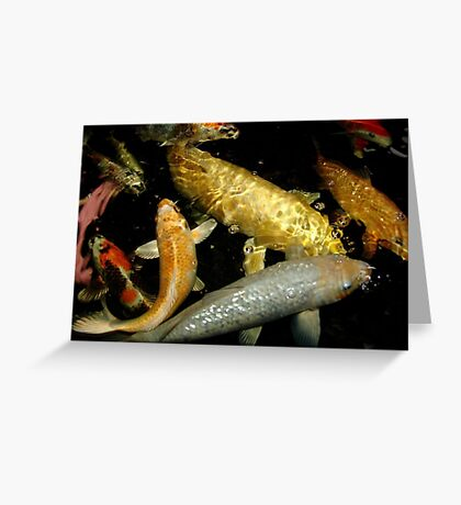 Koi 9 Greeting Card