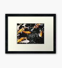 Koi and Stars Framed Print