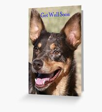 Get Well Soon card from Titch the Koolie Greeting Card