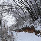 Winter by annalisa bianchetti