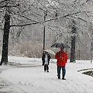 A walk by Dalmatinka
