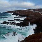 The Wonderful Sea by Brian Carey