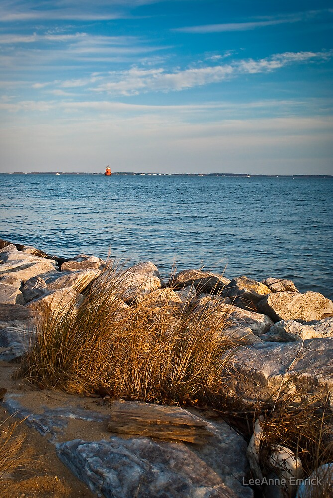 Sandy Point Shoal Lighthouse by LeeAnne Emrick