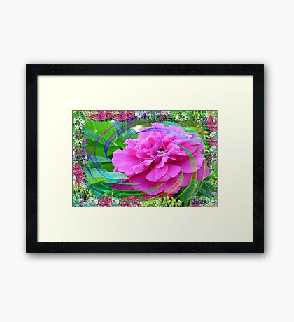 Rose Swirl In My Flower Garden Framed Print