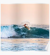 Wave to surf Poster