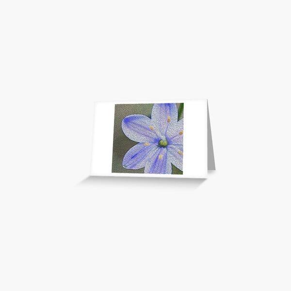 Blue Stars  Greeting Card