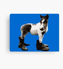 Pony Wearing Boots Canvas Print