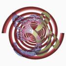 Spirals,  Curves and Swirls by Ann Morgan