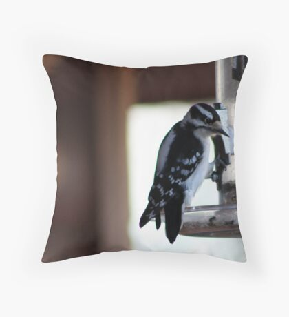 Woodpecker on a Birdfeeder Throw Pillow