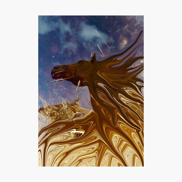 horse in the daily mirror Photographic Print