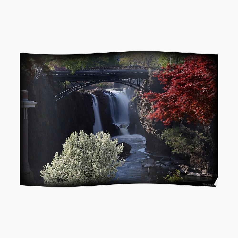 Great Falls Frühlingslaub Poster