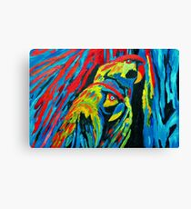MACAW'S (oilpainting) Canvas Print