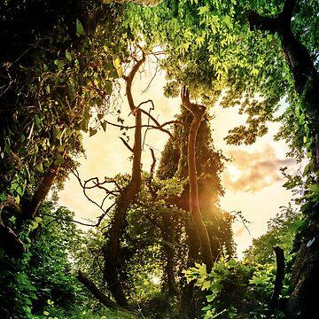Jungle by fourretout