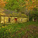 Abandoned  Cottage. Ireland by EUNAN SWEENEY