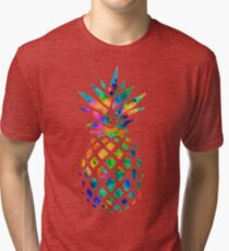 Rainbow Pineapple Tri-blend T-Shirt