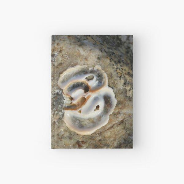 Weathered Seashell Hardcover Journal