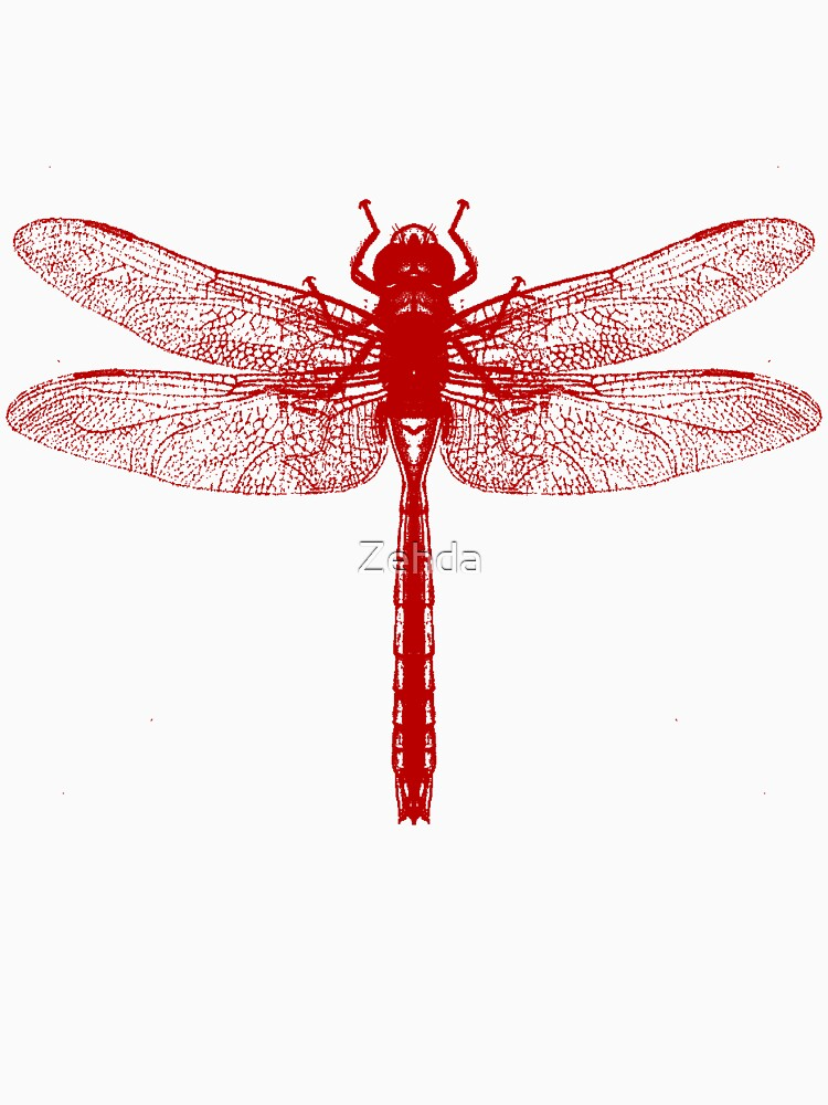 Red Dragonfly by Zehda