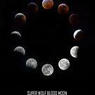 Lunar Eclipse Composite by thestormworks