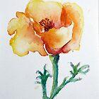 Golden Orange and Tangerine Poppy watercolor by CheyAnne Sexton by CheyAnne Sexton