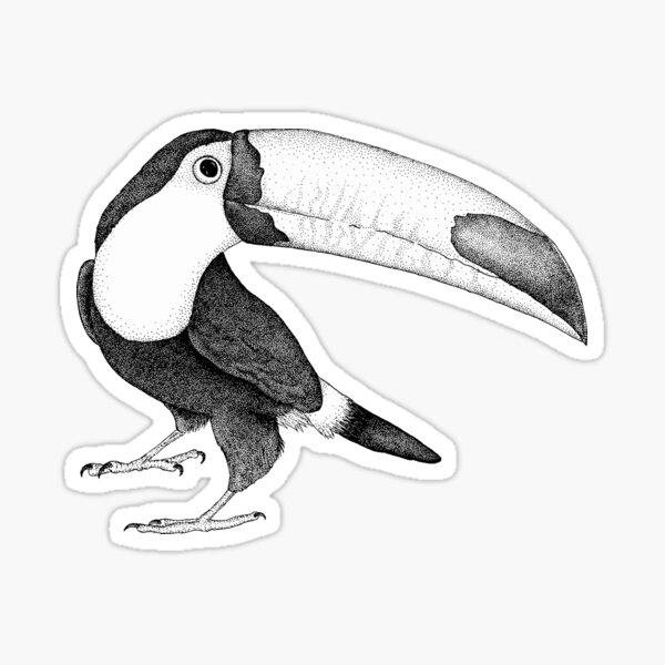 Ripley the Toucan II Sticker