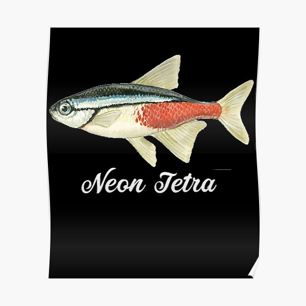 Fish Lovers Posters Redbubble