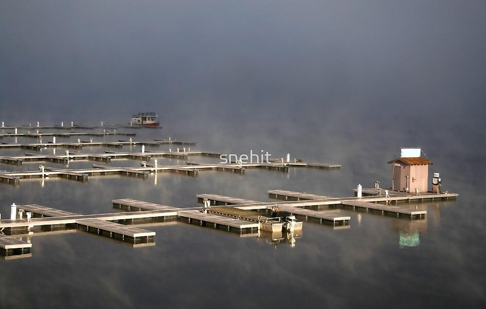 Port In The Morning Fog by snehit