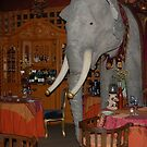 "An Elephant in the dining room ~ ""The Ruins"" ~ Seattle by Marjorie Wallace"