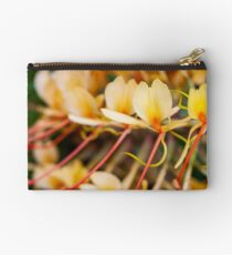Kahili Ginger Studio Pouch