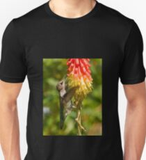 Rufous Hummingbird on Red Hot Poker T-Shirt Unisex T-Shirt