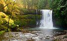 Silver Creek Falls-2 by Zane Paxton
